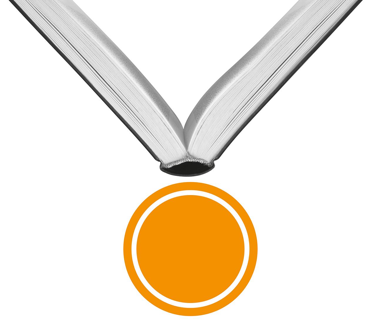 Eversheds_werken-bij-eversheds-icoon_medaille
